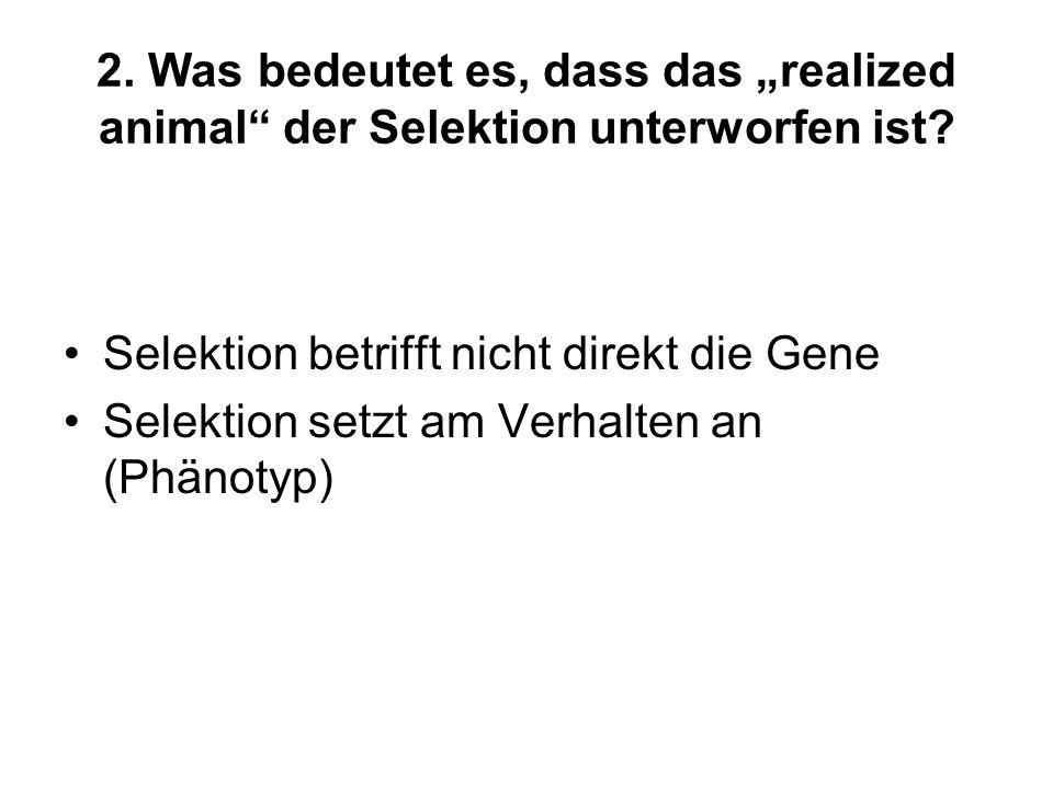 2. Was bedeutet es, dass das realized animal der Selektion unterworfen ist? Selektion betrifft nicht direkt die Gene Selektion setzt am Verhalten an (