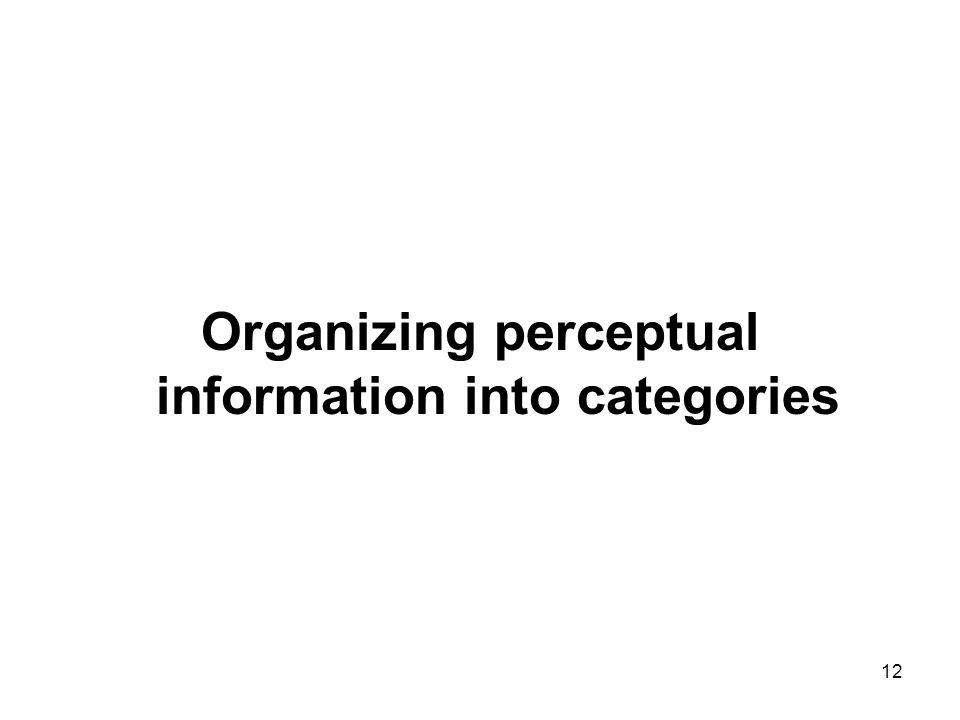 12 Organizing perceptual information into categories
