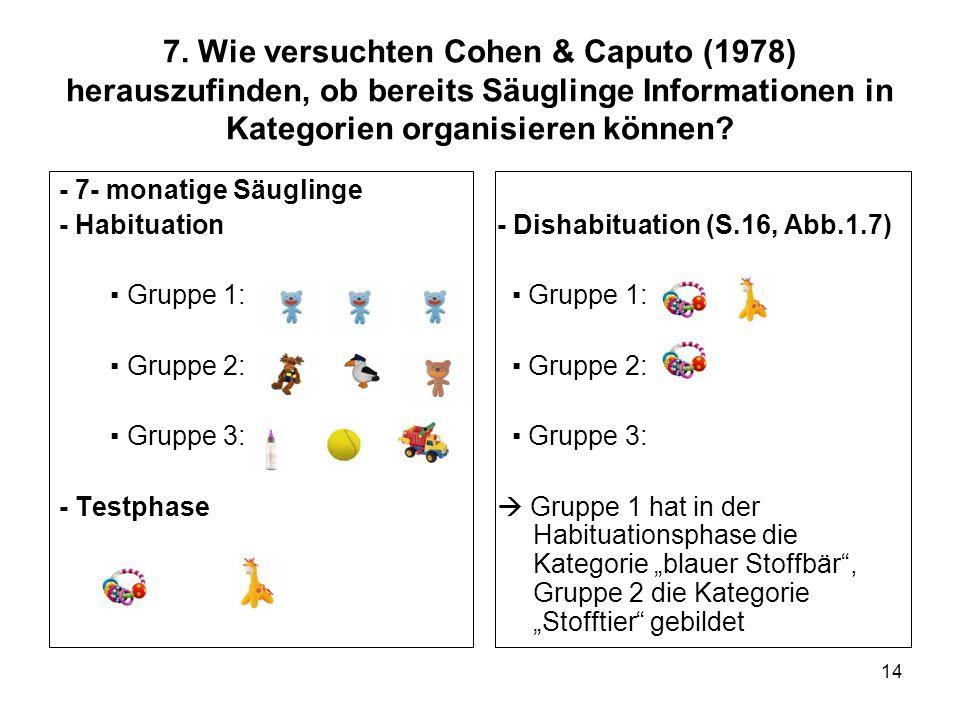 14 7. Wie versuchten Cohen & Caputo (1978) herauszufinden, ob bereits Säuglinge Informationen in Kategorien organisieren können? - 7- monatige Säuglin