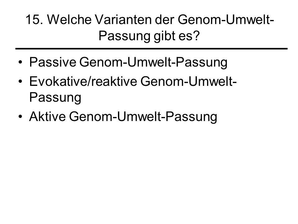 15. Welche Varianten der Genom-Umwelt- Passung gibt es? Passive Genom-Umwelt-Passung Evokative/reaktive Genom-Umwelt- Passung Aktive Genom-Umwelt-Pass