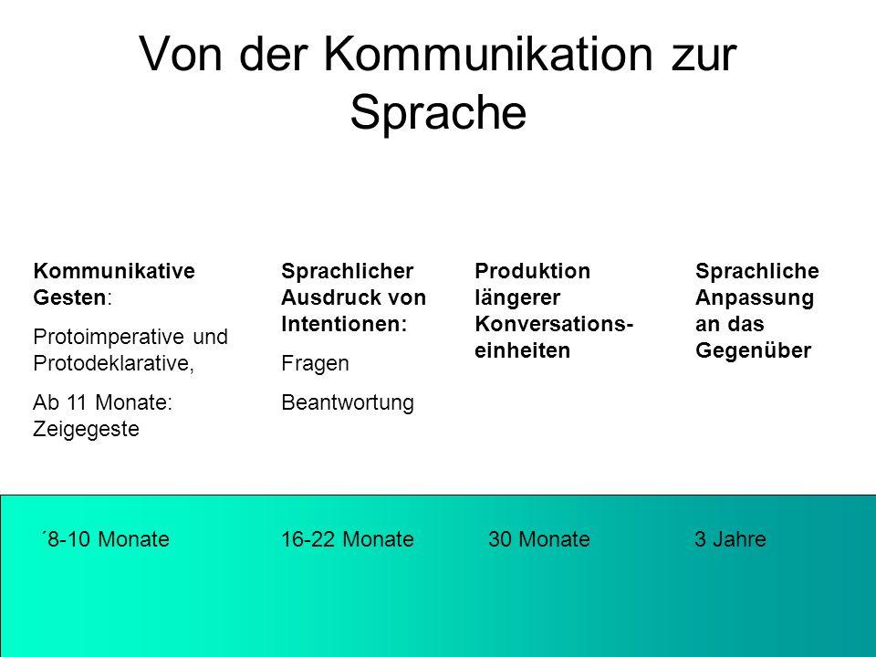 Von der Kommunikation zur Sprache ´8-10 Monate 16-22 Monate 30 Monate 3 Jahre Kommunikative Gesten: Protoimperative und Protodeklarative, Ab 11 Monate