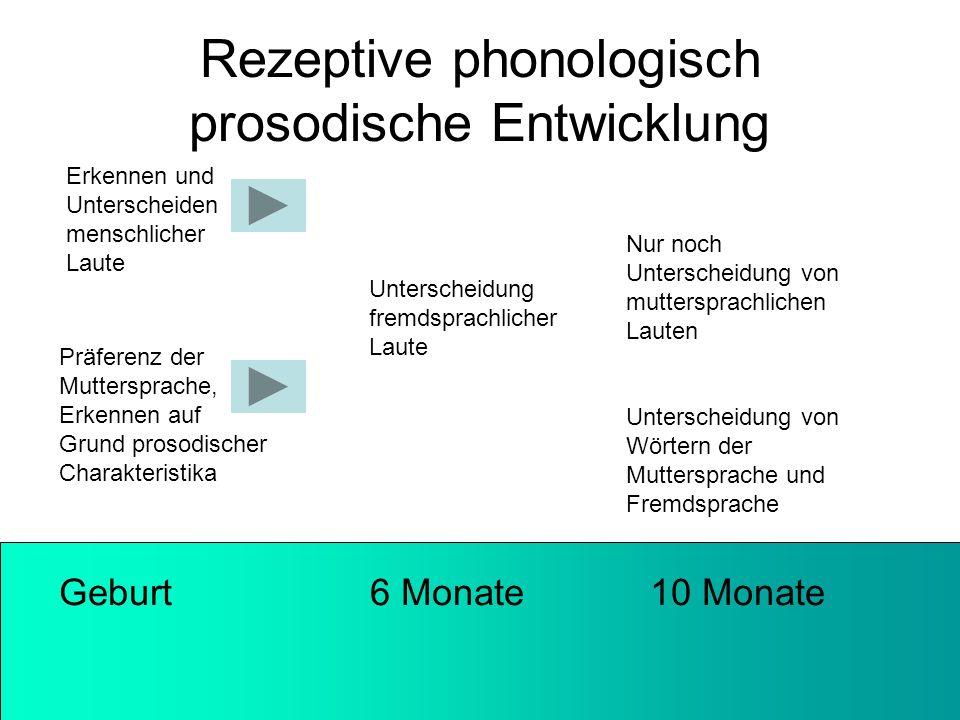 Rezeptive phonologisch prosodische Entwicklung Geburt 6 Monate 10 Monate Erkennen und Unterscheiden menschlicher Laute Unterscheidung fremdsprachliche