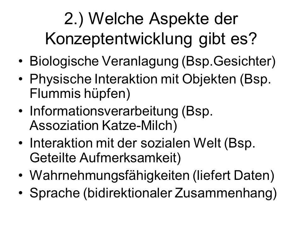 2.) Welche Aspekte der Konzeptentwicklung gibt es? Biologische Veranlagung (Bsp.Gesichter) Physische Interaktion mit Objekten (Bsp. Flummis hüpfen) In