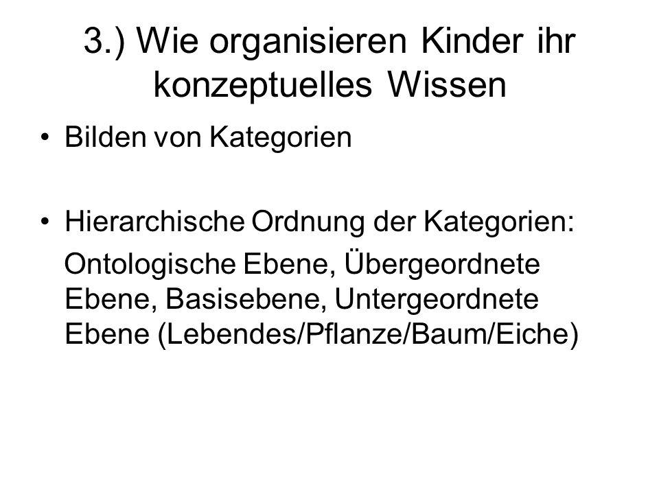3.) Wie organisieren Kinder ihr konzeptuelles Wissen Bilden von Kategorien Hierarchische Ordnung der Kategorien: Ontologische Ebene, Übergeordnete Ebe