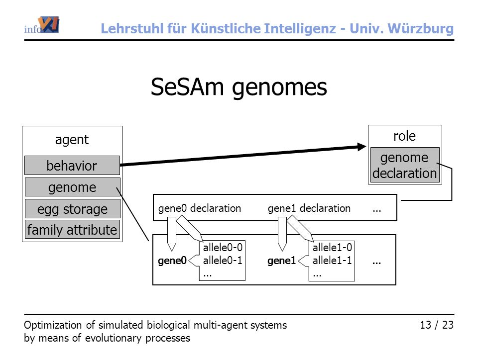Lehrstuhl für Künstliche Intelligenz - Univ. Würzburg 13 / 23Optimization of simulated biological multi-agent systems by means of evolutionary process