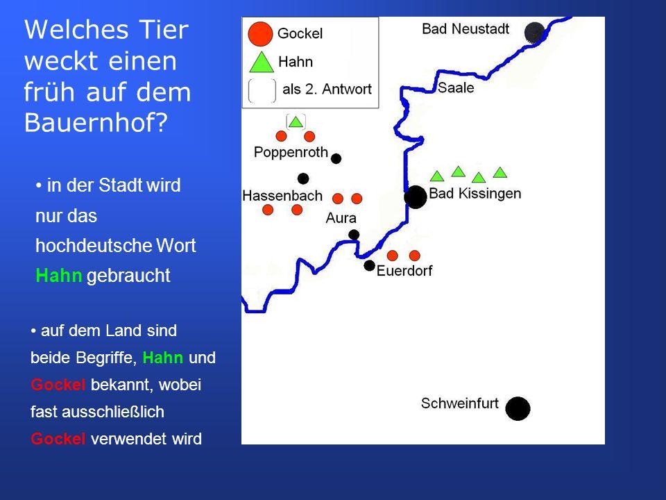 auf dem Land sind beide Begriffe, Hahn und Gockel bekannt, wobei fast ausschließlich Gockel verwendet wird in der Stadt wird nur das hochdeutsche Wort