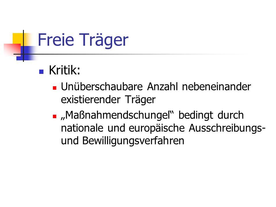 Freie Träger Kritik: Unüberschaubare Anzahl nebeneinander existierender Träger Maßnahmendschungel bedingt durch nationale und europäische Ausschreibun