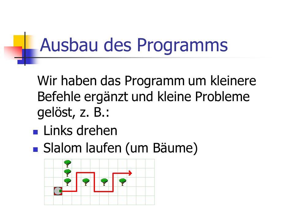 Ausbau des Programms Links drehen Slalom laufen (um Bäume) Wir haben das Programm um kleinere Befehle ergänzt und kleine Probleme gelöst, z. B.: