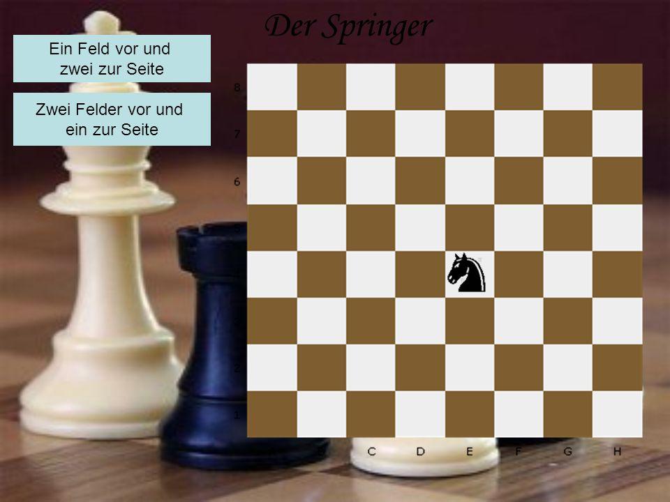 Der Springer Ein Feld vor und zwei zur Seite Zwei Felder vor und ein zur Seite