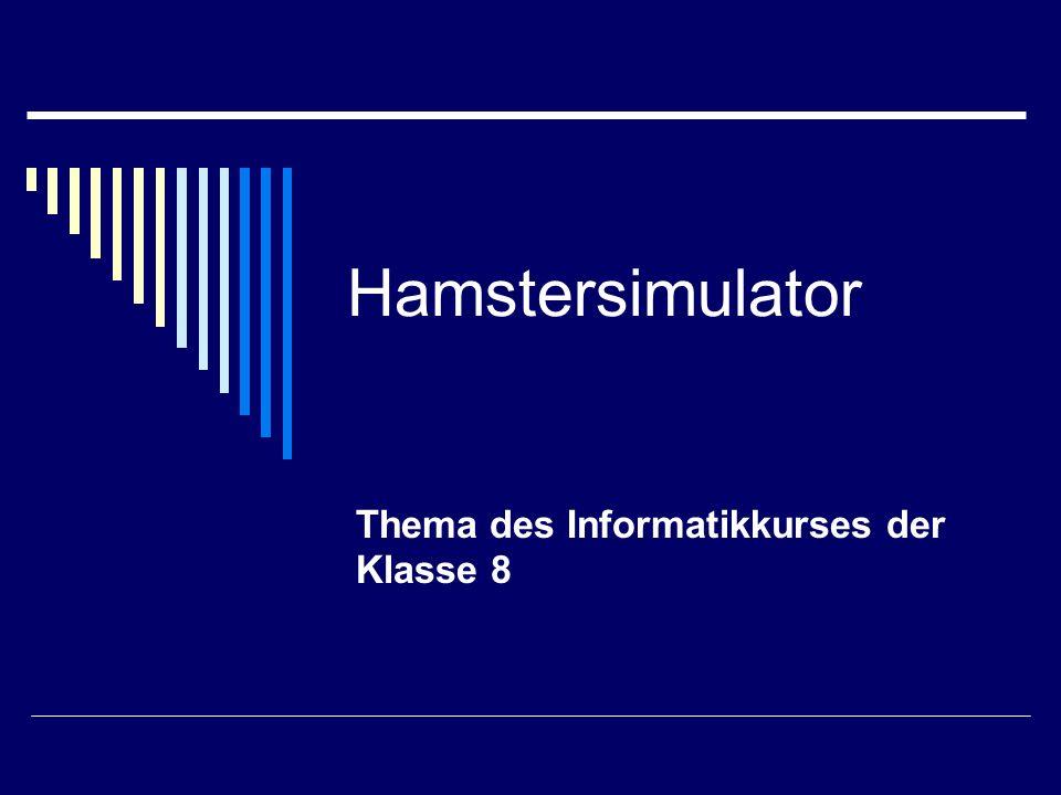 Hamstersimulator Thema des Informatikkurses der Klasse 8