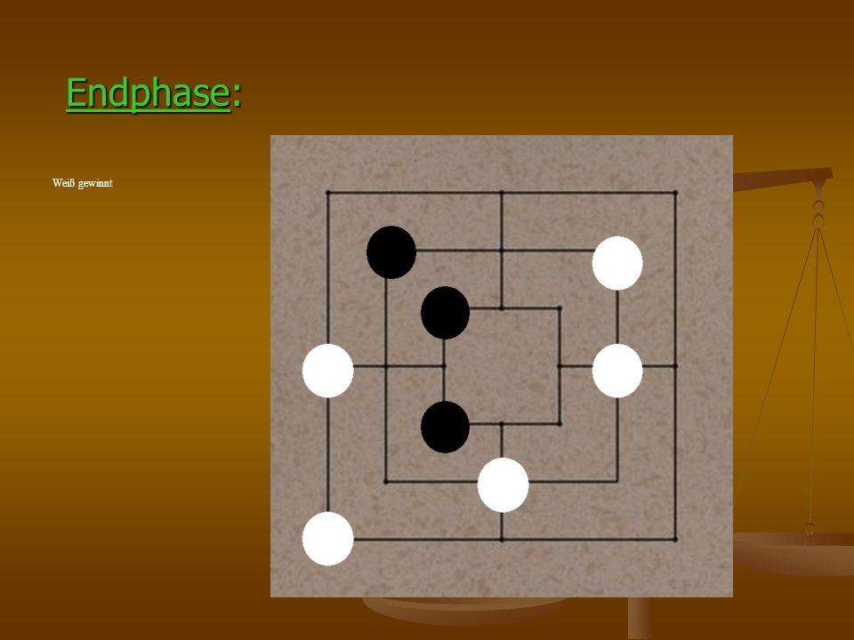Die Zwickmühle 1.Zug: Schwarz schiebt eine Mühle Schwarz nimmt einen Spielstein des Gegners weg 2.Zug: Weiß verschiebt einen Stein 3.Zug: Schwarz hat eine Zwickmühle Schwarz nimmt eine Spielstein des Gegners weg 4.Zug: Weiß verhindert eine Zwickmühle des Gegners 5.Zug: Schwarz wendet Zwickmühle an Schwarz nimmt wieder einen Stein des Gegners weg …