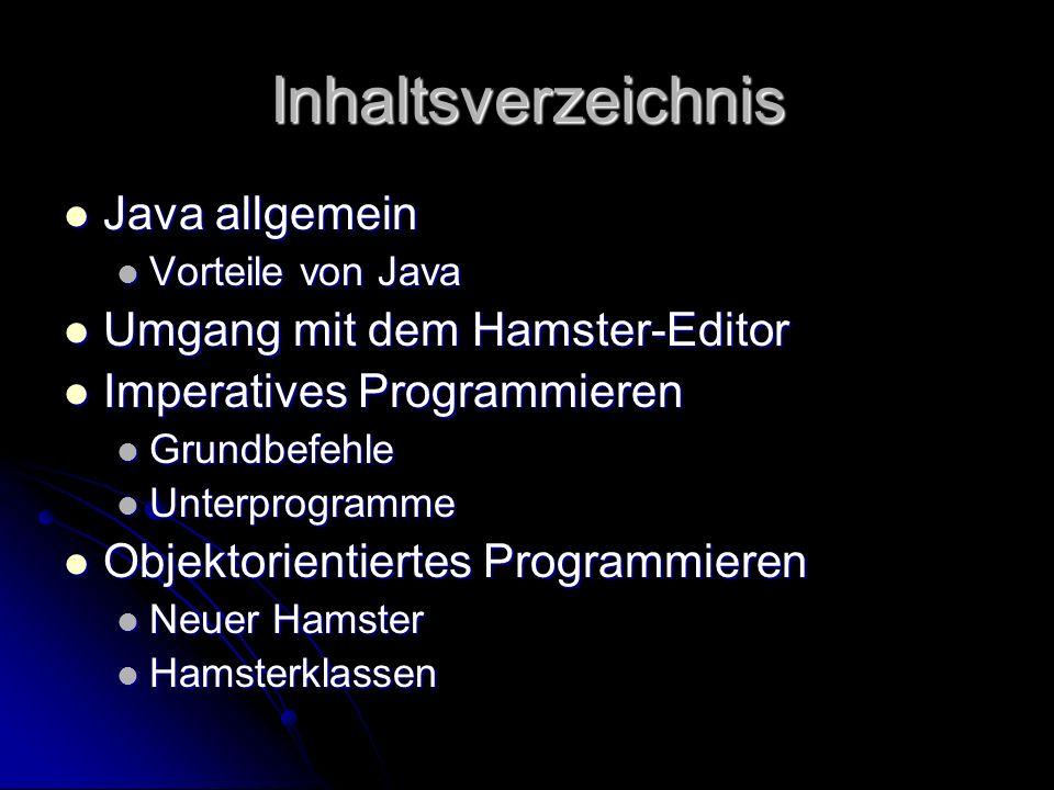Java allgemein neue Programmiersprache neue Programmiersprache leicht zu verstehen leicht zu verstehen Beispiele: Beispiele: Das Hamstermodell von Dietrich Boles Das Hamstermodell von Dietrich Boles Sog.
