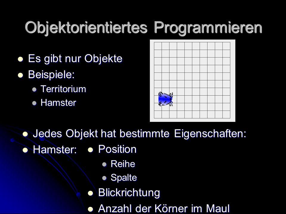 Neues Objekt: Hamster Kein automatischer Hamster beim Start Kein automatischer Hamster beim Start Definition eines Hamsters: Definition eines Hamsters: Hamster willi=newHamster Deklaration einer Variablen willi vom Typ Hamster Name der Variablen Initialisierung der Variablen Neues Objekt vom Typ Hamster Ohne Parameter ();