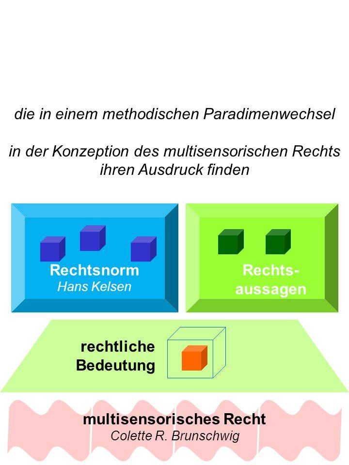 Rechtsnorm Hans Kelsen Rechts- aussagen rechtliche Bedeutung die in einem methodischen Paradimenwechsel in der Konzeption des multisensorischen Rechts