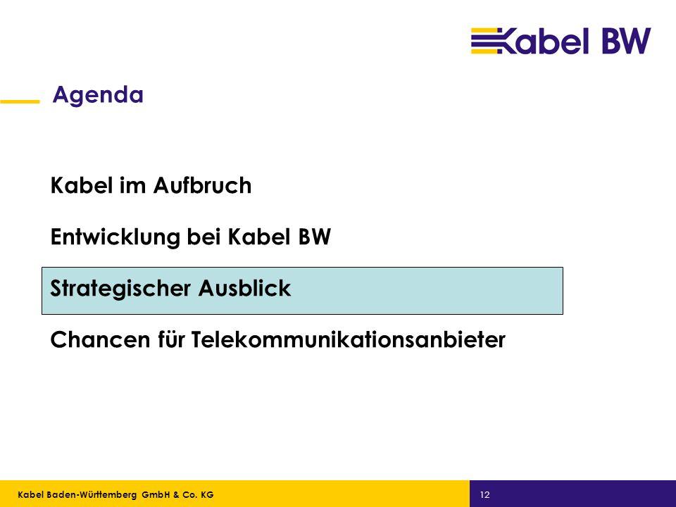 Kabel Baden-Württemberg GmbH Kabel Baden-Württemberg GmbH & Co. KG 12 Agenda Kabel im Aufbruch Entwicklung bei Kabel BW Strategischer Ausblick Chancen