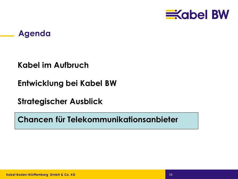 Kabel Baden-Württemberg GmbH Kabel Baden-Württemberg GmbH & Co. KG 15 Agenda Kabel im Aufbruch Entwicklung bei Kabel BW Strategischer Ausblick Chancen