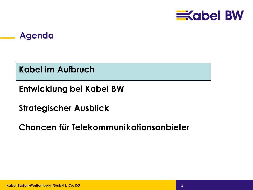 Kabel Baden-Württemberg GmbH Kabel Baden-Württemberg GmbH & Co. KG 2 Agenda Kabel im Aufbruch Entwicklung bei Kabel BW Strategischer Ausblick Chancen