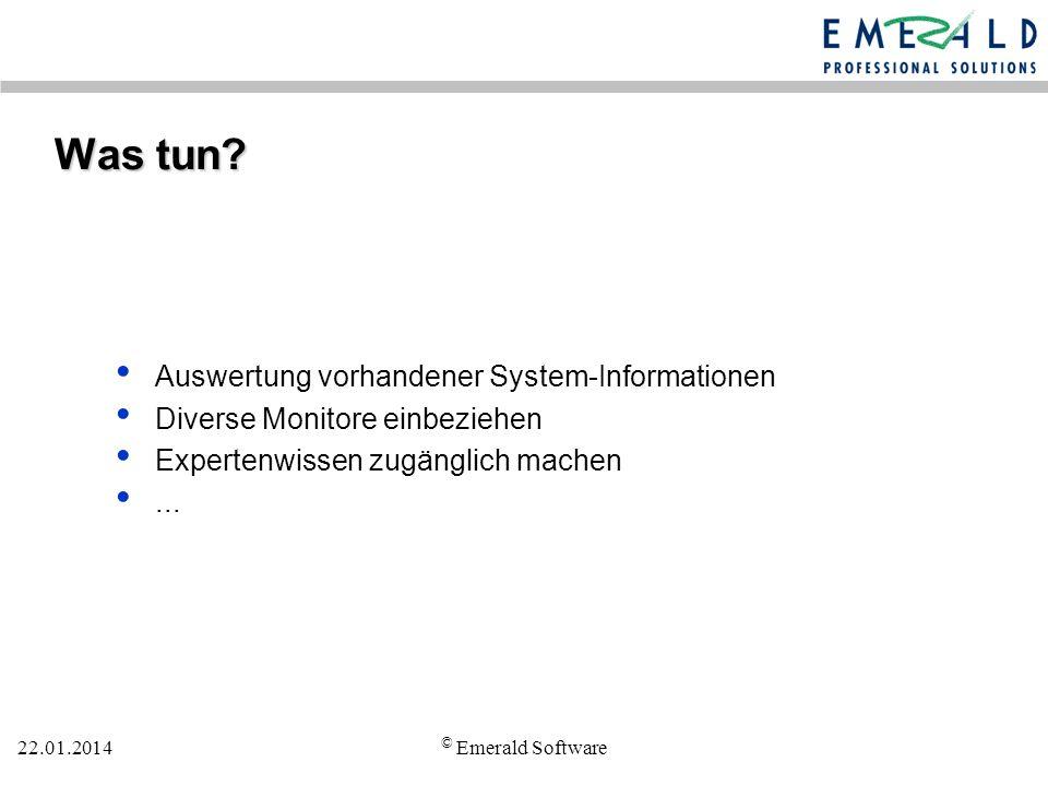 22.01.2014 © Emerald Software Was tun.