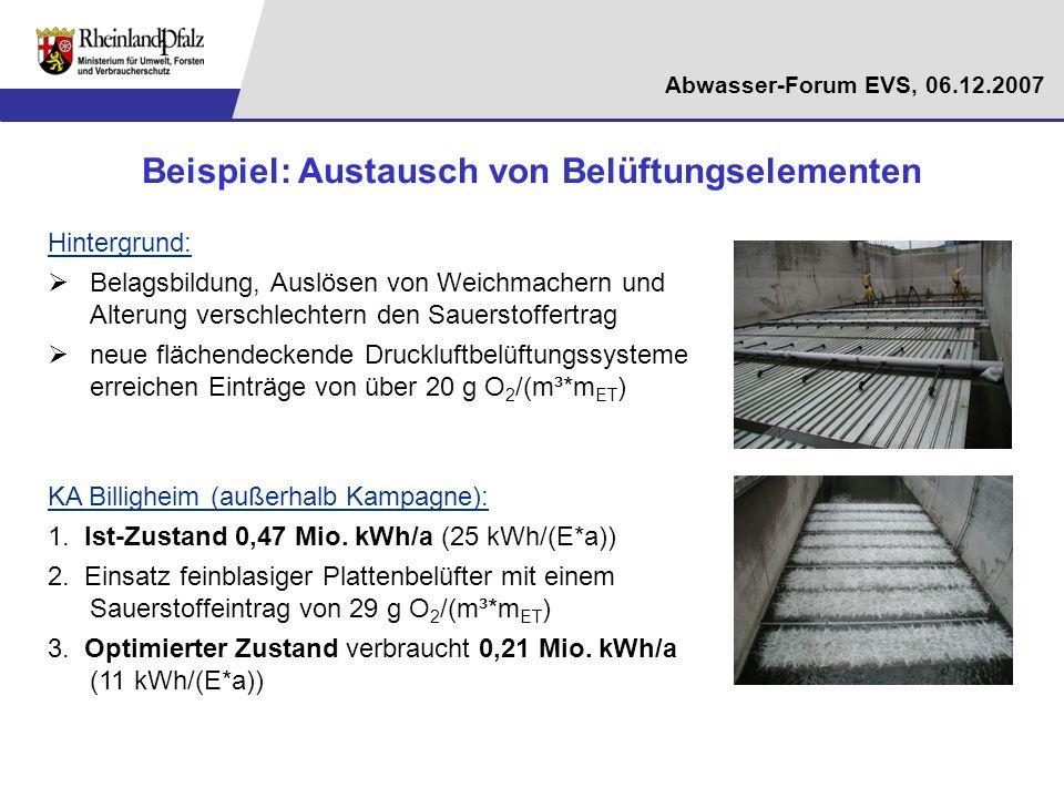 Abwasser-Forum EVS, 06.12.2007 Beispiel: Austausch von Belüftungselementen Hintergrund: Belagsbildung, Auslösen von Weichmachern und Alterung verschle