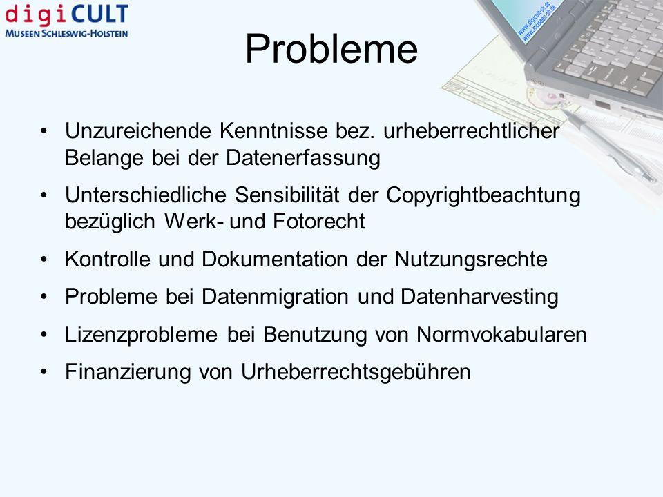 Probleme Unzureichende Kenntnisse bez. urheberrechtlicher Belange bei der Datenerfassung Unterschiedliche Sensibilität der Copyrightbeachtung bezüglic