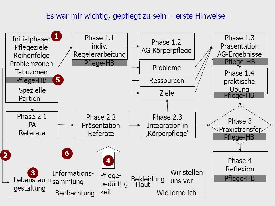 Es war mir wichtig, gepflegt zu sein - erste Hinweise Initialphase: Pflegeziele Reihenfolge Problemzonen Tabuzonen Phase 1.1 indiv. Regelerarbeitung P
