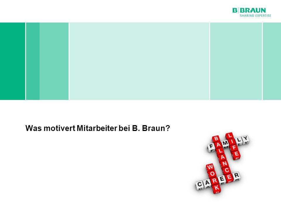 Personal- und Sozialwesen | Dirk Kalb | Mitarbeitermotivation bei B. Braun Melsungen AG | Seite Was motivert Mitarbeiter bei B. Braun?
