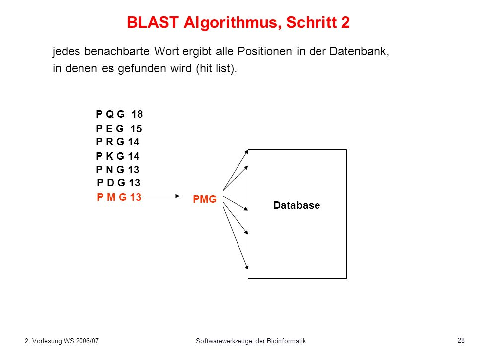 2. Vorlesung WS 2006/07Softwarewerkzeuge der Bioinformatik 28 BLAST Algorithmus, Schritt 2 jedes benachbarte Wort ergibt alle Positionen in der Datenb