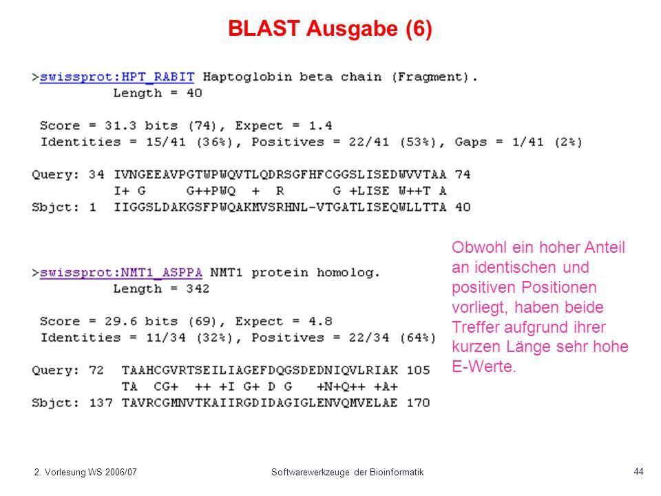 2. Vorlesung WS 2006/07Softwarewerkzeuge der Bioinformatik 44 BLAST Ausgabe (6) Obwohl ein hoher Anteil an identischen und positiven Positionen vorlie