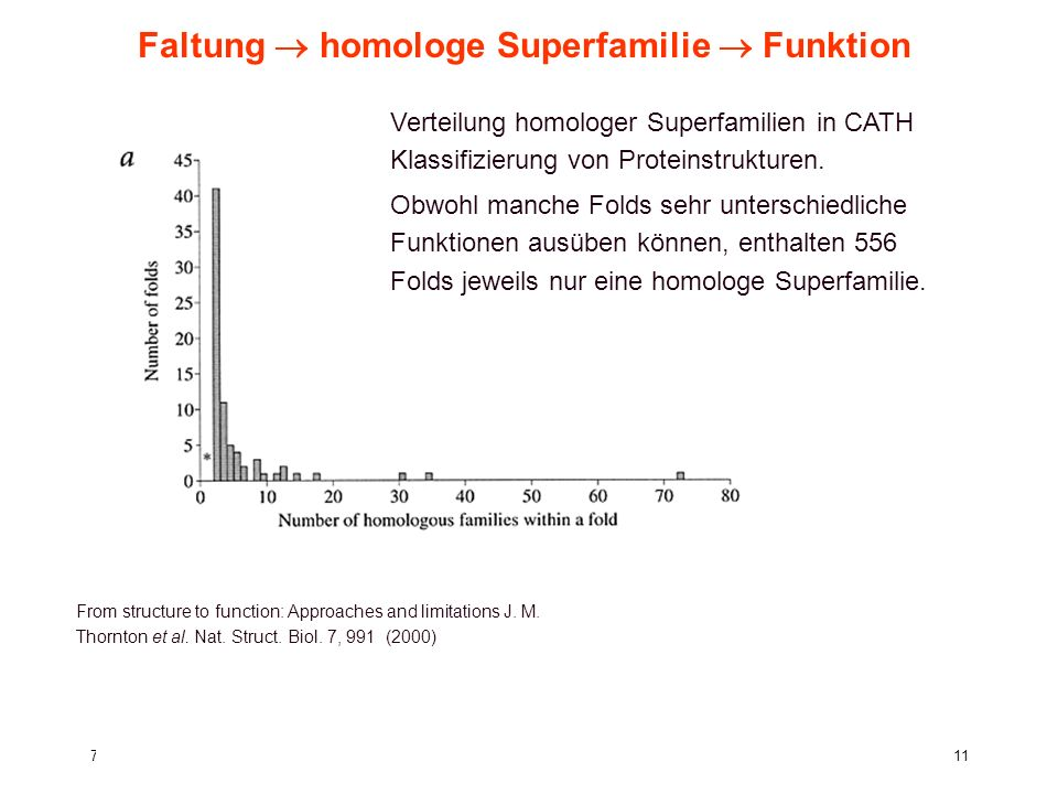 7. Vorlesung WS 2005/06Softwarewerkzeuge11 Faltung homologe Superfamilie Funktion From structure to function: Approaches and limitations J. M. Thornto