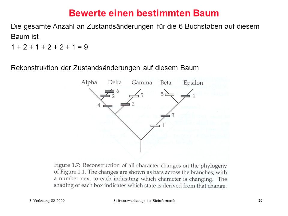 Softwarewerkzeuge der Bioinformatik29 Bewerte einen bestimmten Baum Die gesamte Anzahl an Zustandsänderungen für die 6 Buchstaben auf diesem Baum ist