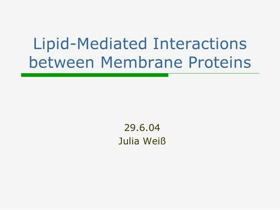 2 Gliederung Einleitung Verschiedene Methoden zur Berechnung der Kräfte zwischen integralen Membran-Proteinen Zusammenfassung