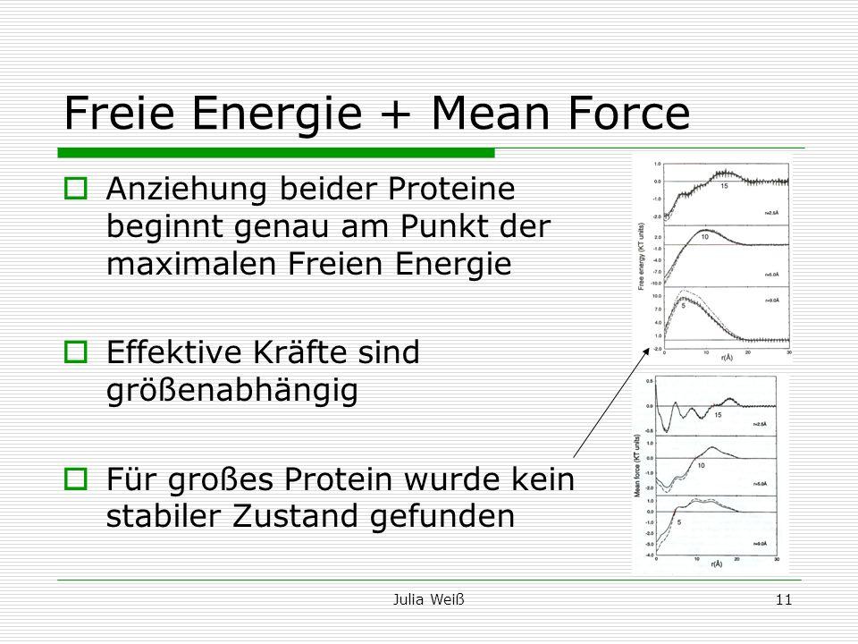 Julia Weiß11 Freie Energie + Mean Force Anziehung beider Proteine beginnt genau am Punkt der maximalen Freien Energie Effektive Kräfte sind größenabhä