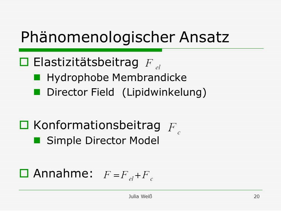Julia Weiß20 Phänomenologischer Ansatz Elastizitätsbeitrag Hydrophobe Membrandicke Director Field (Lipidwinkelung) Konformationsbeitrag Simple Directo