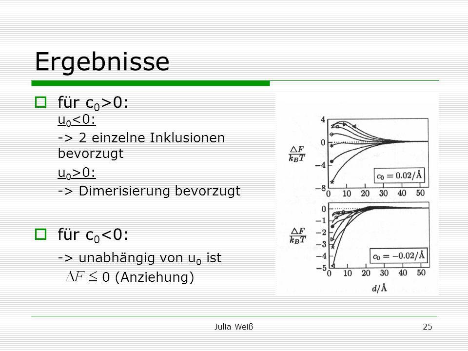 Julia Weiß25 Ergebnisse für c 0 >0: u 0 <0: -> 2 einzelne Inklusionen bevorzugt u 0 >0: -> Dimerisierung bevorzugt für c 0 <0: -> unabhängig von u 0 i
