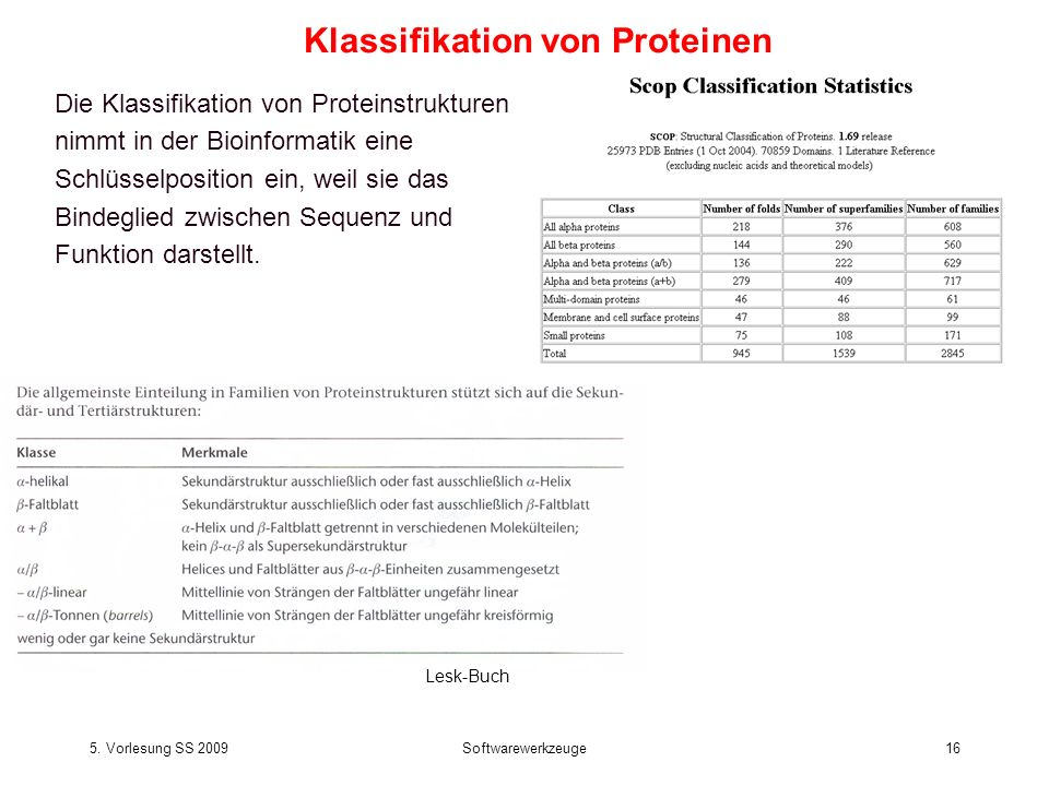 5. Vorlesung SS 2009Softwarewerkzeuge16 Die Klassifikation von Proteinstrukturen nimmt in der Bioinformatik eine Schlüsselposition ein, weil sie das B