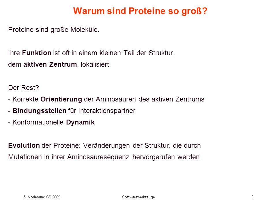 5. Vorlesung SS 2009Softwarewerkzeuge3 Warum sind Proteine so groß? Proteine sind große Moleküle. Ihre Funktion ist oft in einem kleinen Teil der Stru