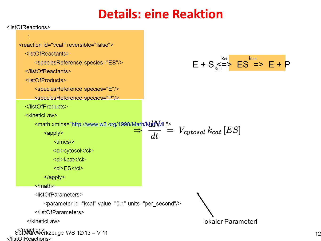 Softwarewerkzeuge WS 12/13 – V 11 Details: eine Reaktion 12 : http://www.w3.org/1998/Math/MathML cytosol kcat ES E + S ES => E + P k on k off k cat lokaler Parameter!