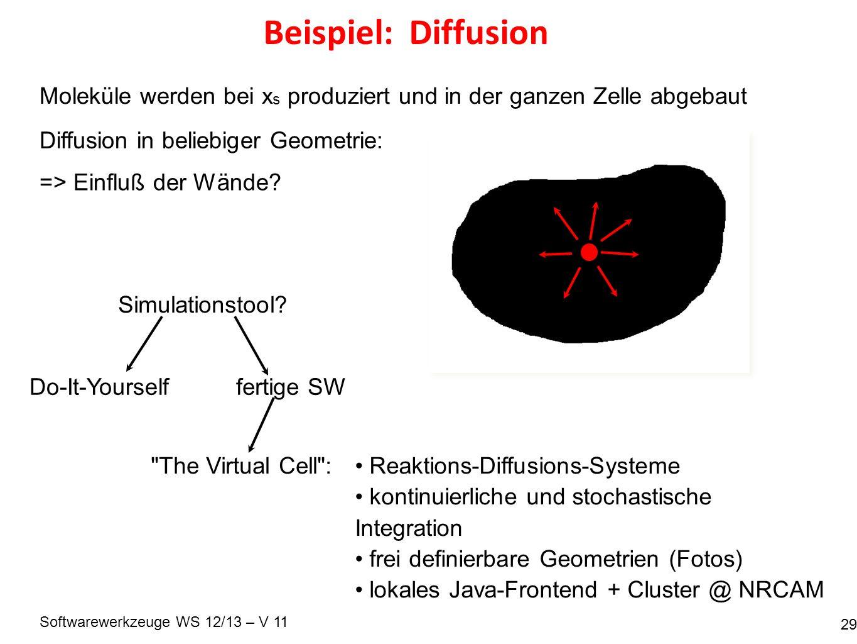 Softwarewerkzeuge WS 12/13 – V 11 Beispiel: Diffusion 29 Moleküle werden bei x s produziert und in der ganzen Zelle abgebaut Diffusion in beliebiger Geometrie: => Einfluß der Wände.