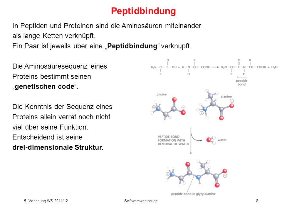 5. Vorlesung WS 2011/12Softwarewerkzeuge19 Die 20 natürlichen Aminosäuren