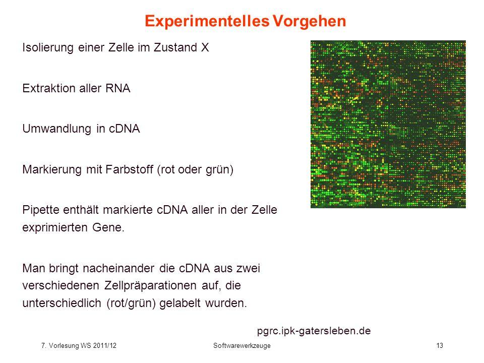 7. Vorlesung WS 2011/12Softwarewerkzeuge13 Experimentelles Vorgehen Isolierung einer Zelle im Zustand X Extraktion aller RNA Umwandlung in cDNA Markie