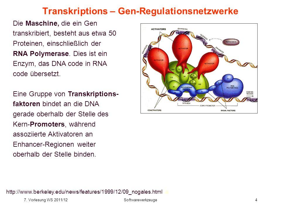 7. Vorlesung WS 2011/12Softwarewerkzeuge4 Transkriptions – Gen-Regulationsnetzwerke Die Maschine, die ein Gen transkribiert, besteht aus etwa 50 Prote
