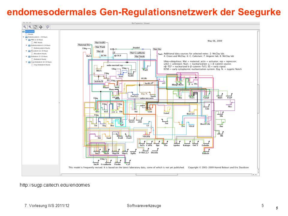 7. Vorlesung WS 2011/12Softwarewerkzeuge5 5 endomesodermales Gen-Regulationsnetzwerk der Seegurke http://sugp.caltech.edu/endomes