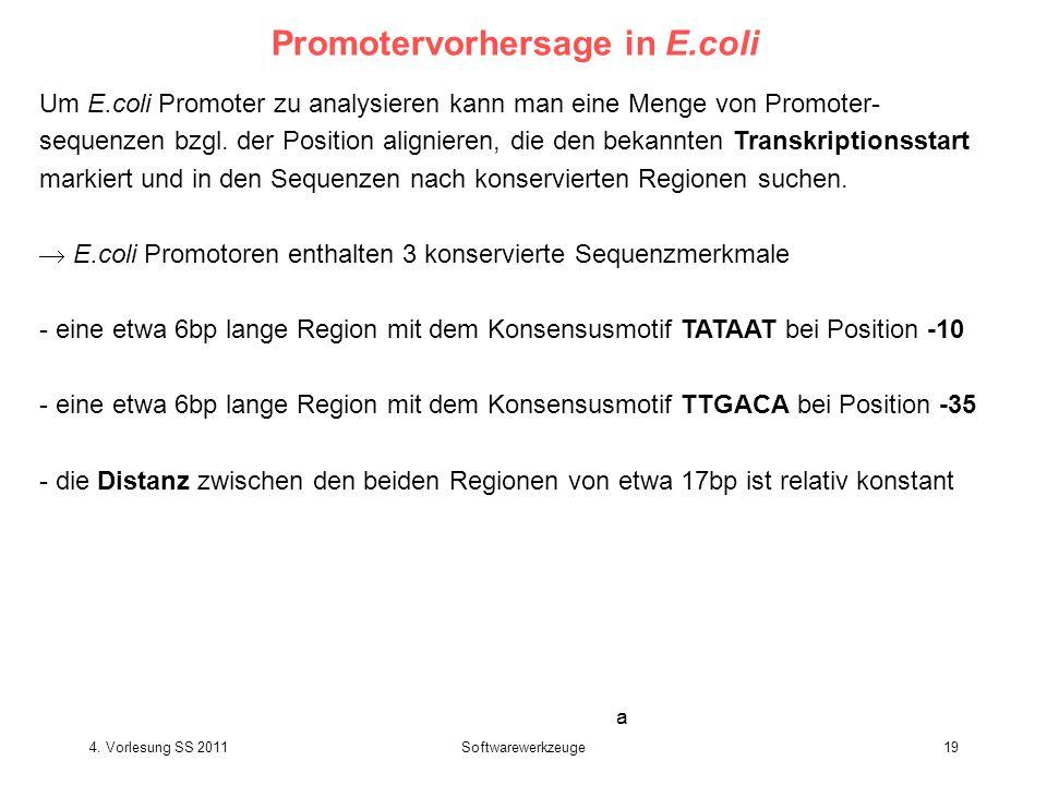 4. Vorlesung SS 2011Softwarewerkzeuge19 Promotervorhersage in E.coli Um E.coli Promoter zu analysieren kann man eine Menge von Promoter- sequenzen bzg