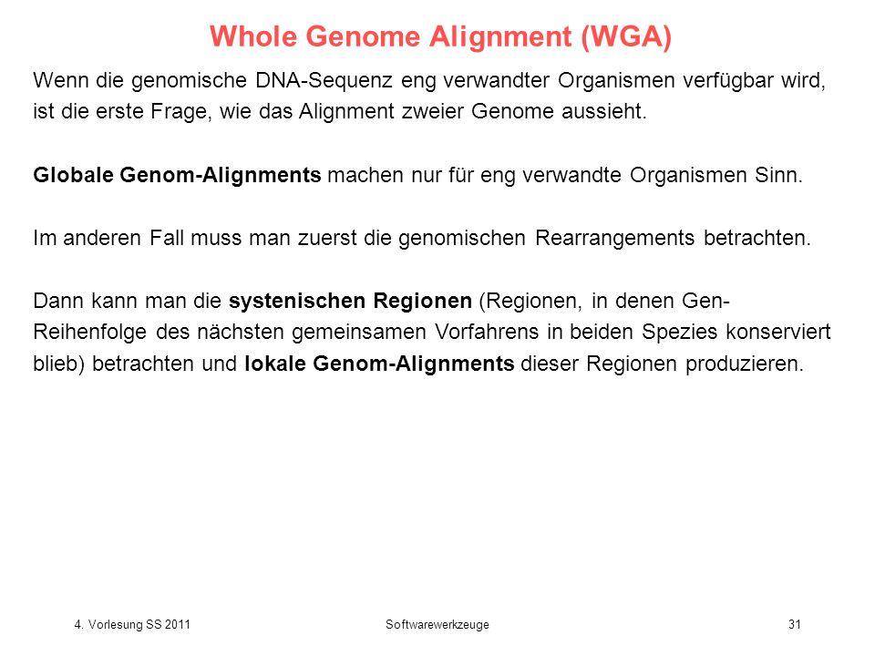 4. Vorlesung SS 2011Softwarewerkzeuge31 Whole Genome Alignment (WGA) Wenn die genomische DNA-Sequenz eng verwandter Organismen verfügbar wird, ist die