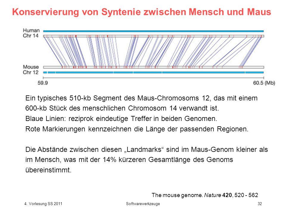 4. Vorlesung SS 2011Softwarewerkzeuge32 The mouse genome. Nature 420, 520 - 562 Konservierung von Syntenie zwischen Mensch und Maus Ein typisches 510-