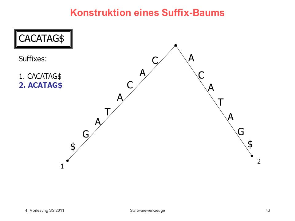 4. Vorlesung SS 2011Softwarewerkzeuge43 Konstruktion eines Suffix-Baums CACATAG$ Suffixes: 1. CACATAG$ 2. ACATAG$ C A T C A G $ A T C A G $ A 1 2 A