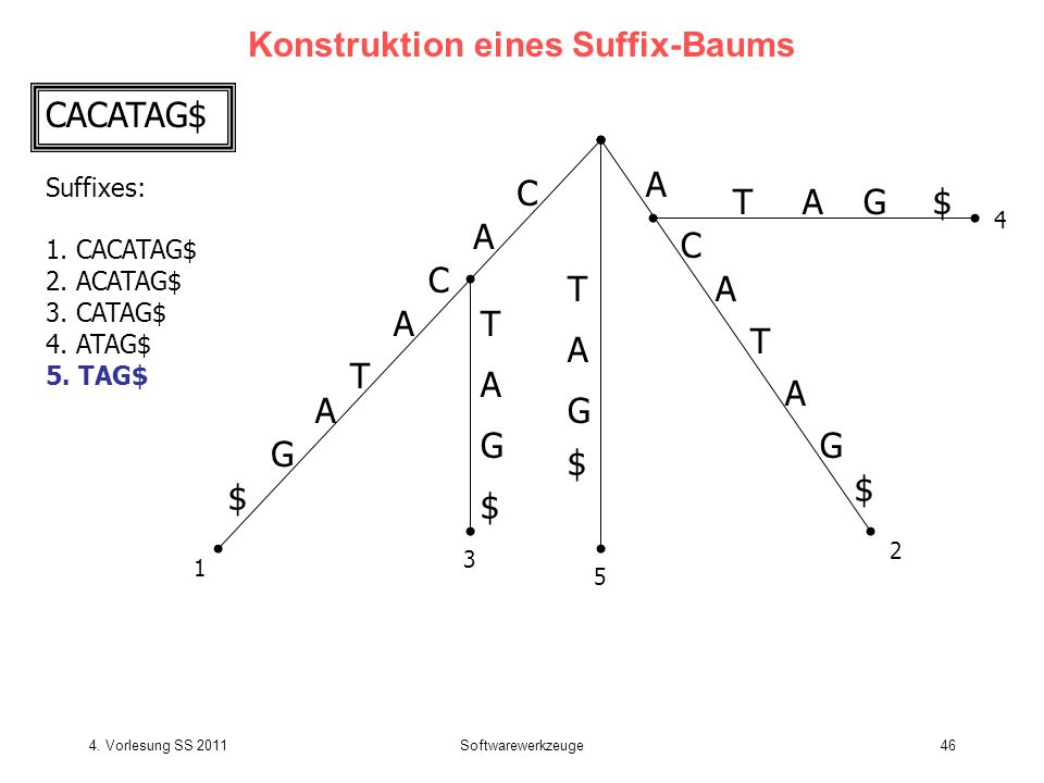 4. Vorlesung SS 2011Softwarewerkzeuge46 Konstruktion eines Suffix-Baums CACATAG$ Suffixes: 1. CACATAG$ 2. ACATAG$ 3. CATAG$ 4. ATAG$ 5. TAG$ C A T C A