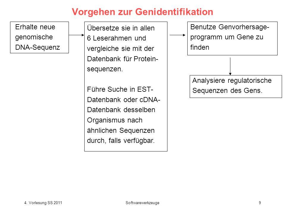 4. Vorlesung SS 2011Softwarewerkzeuge9 Vorgehen zur Genidentifikation Erhalte neue genomische DNA-Sequenz Übersetze sie in allen 6 Leserahmen und verg