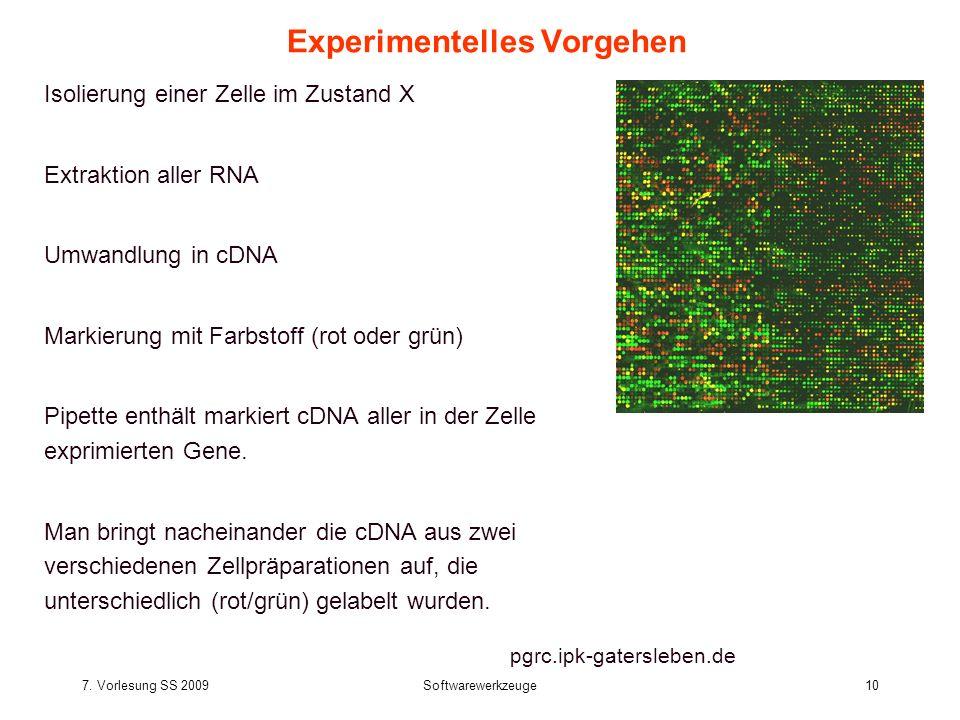 7. Vorlesung SS 2009Softwarewerkzeuge10 Experimentelles Vorgehen Isolierung einer Zelle im Zustand X Extraktion aller RNA Umwandlung in cDNA Markierun