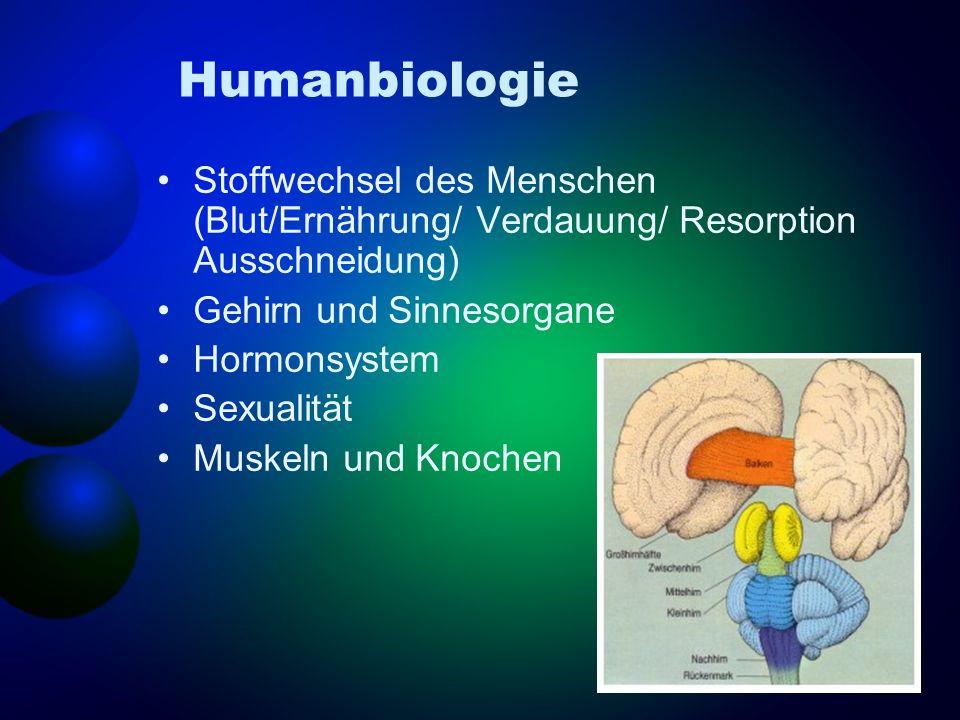 Humanbiologie Stoffwechsel des Menschen (Blut/Ernährung/ Verdauung/ Resorption Ausschneidung) Gehirn und Sinnesorgane Hormonsystem Sexualität Muskeln